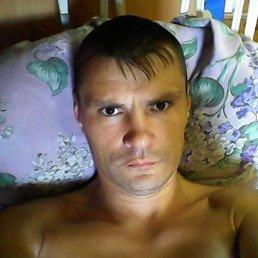 Андрей, 43 года, Киров