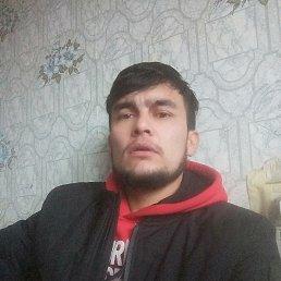 Саша, 29 лет, Калининград
