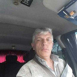 Игорь, 50 лет, Сочи