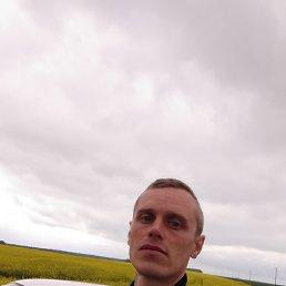 Владимир, 33 года, Ливны
