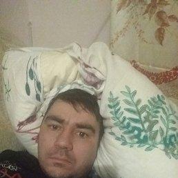 Вова, 37 лет, Саратов
