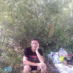 Андрей, 45 лет, Ульяновск