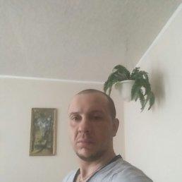 Макс, 33 года, Рязань