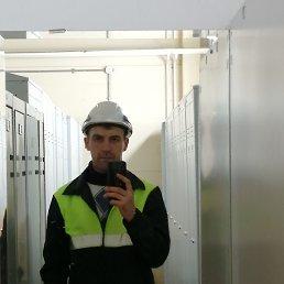 Дима, 31 год, Тула