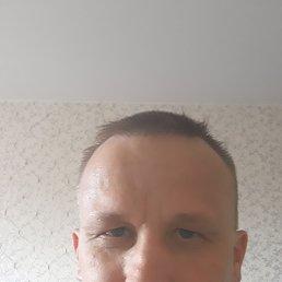 Дмитрий, 42 года, Сарапул