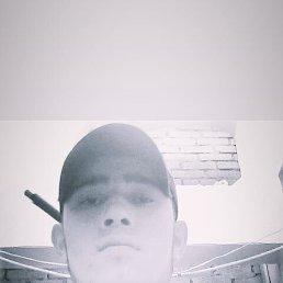 Бобочон, 22 года, Истра