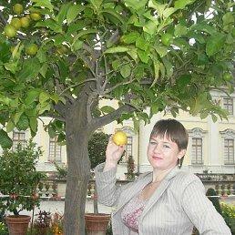 Алина, 42 года, Москва