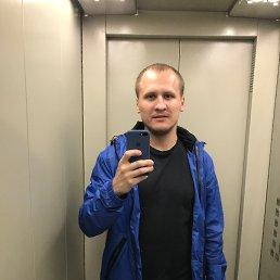 Сергей, 29 лет, Калининград