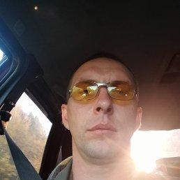 Владимир, 33 года, Тверь