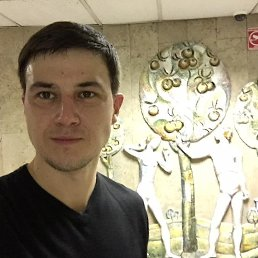 Roman, 40 лет, Мытищи