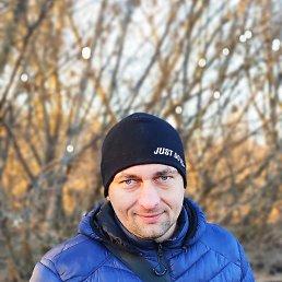 Юрий, 37 лет, Мерефа