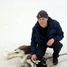 Владимир, 44 года, Пермь