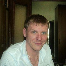 Александр, 35 лет, Сочи