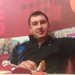 Александр, 37 лет, Тула