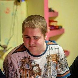 Юрий, 28 лет, Червоноград