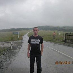 Александр, 37 лет, Новокузнецк