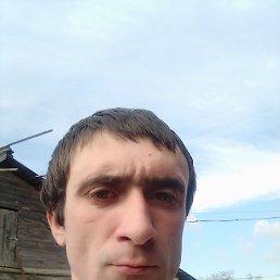 Николай, Волгоград, 27 лет