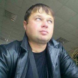 Владимир, 37 лет, Котовск