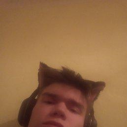 Никитамирный, 19 лет, Пермь