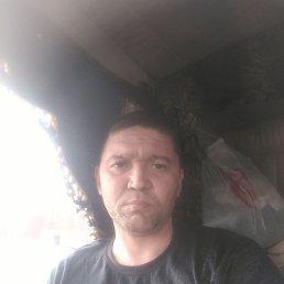 Павел, 41 год, Пласт
