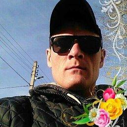 Алексей, 34 года, Саратов