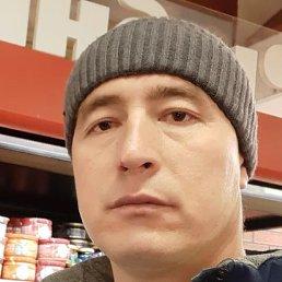 Толик, Тула, 39 лет