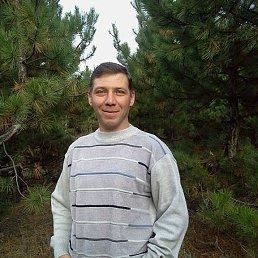 Сергей, 48 лет, Саратов