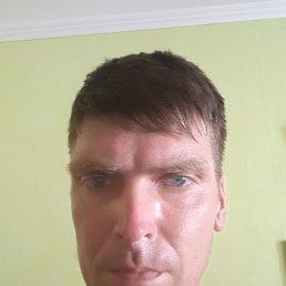Алексей, 36 лет, Люберцы