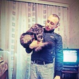 Александр, 37 лет, Лыткарино