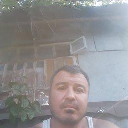 Али, 43 года, Воронеж