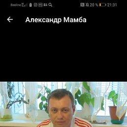 Александр, 42 года, Ставрополь