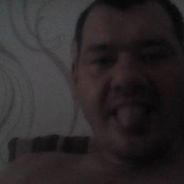 Dima, 38 лет, Волгоград