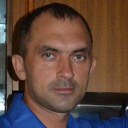 Дима, Тюмень, 46 лет