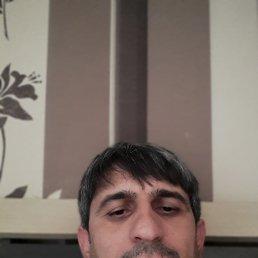 Алишер, 38 лет, Новосибирск