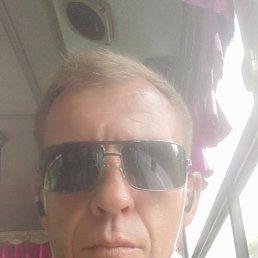 Валера, 45 лет, Белогорск