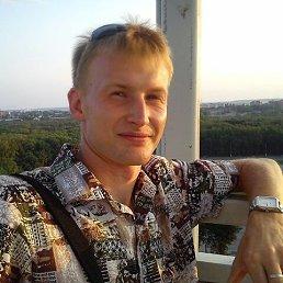Евгений, 32 года, Тула