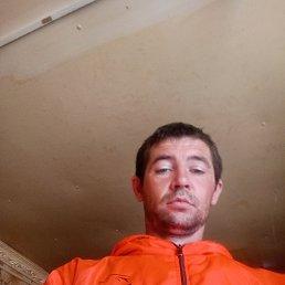 Василий, 34 года, Домодедово