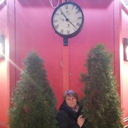 Юлия, 41 год, Тольятти