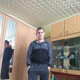 Алексей, 38 лет, Серпухов