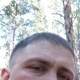 Николай, 37 лет, Барнаул