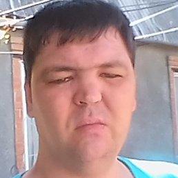 Саша, Таганрог, 39 лет