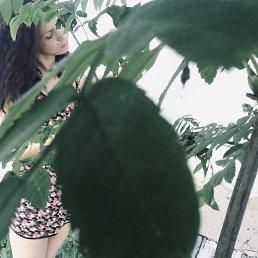 Анна, 33 года, Лобня