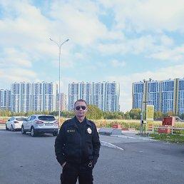 Владимир, 53 года, Санкт-Петербург