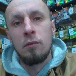 Сергей, 33 года, Волгоград