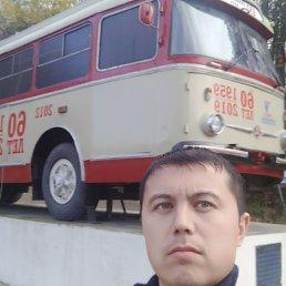 Дима, 29 лет, Копейск