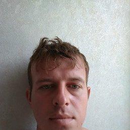 Дима, 33 года, Тула