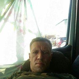 Сергей, 40 лет, Тверь