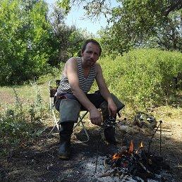 Дмитрий, 39 лет, Волгоград