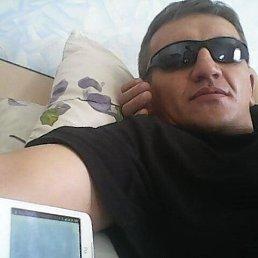 Александр, 44 года, Краснодар