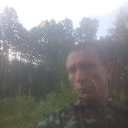 Николай, 38 лет, Новосибирск